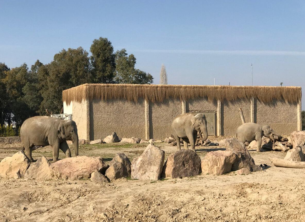 Зоопарк Измира